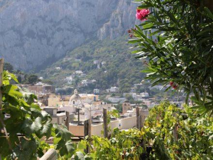 Capri schwule Kreuzfahrt